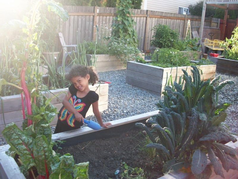 Frugal Gardening Four Inexpensive Raised Bed Ideas Ifmore - Inexpensive raised garden bed ideas