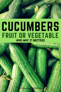 cucumber fruit