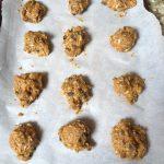 no'atmeal cookies pre-bake