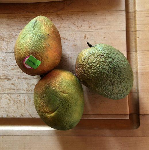 Mango overripe