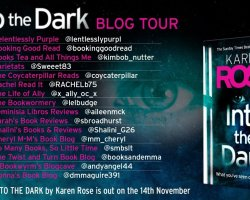into the dark bt poster 1 2 - Monthly Reading Wrap-Up: November 2019