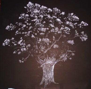 Oak Tree (6) 001