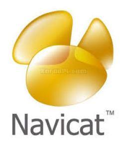 Navicat Premium 15.0.25 Crack With Serial Key Free Download 2021