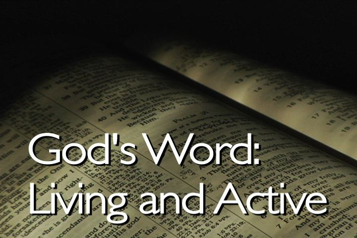 Image result for hearing and doing god's word