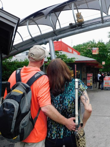 philadelphia-zoo-summer-ale-festival_20180623-182200 (2)