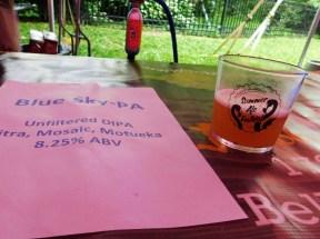 philadelphia-zoo-summer-ale-festival_20180623-194233-Robin Hood Blue Sky-PA