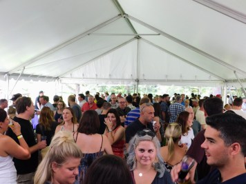 Fonthill Castle Beer Festival 2018 065 (Large)