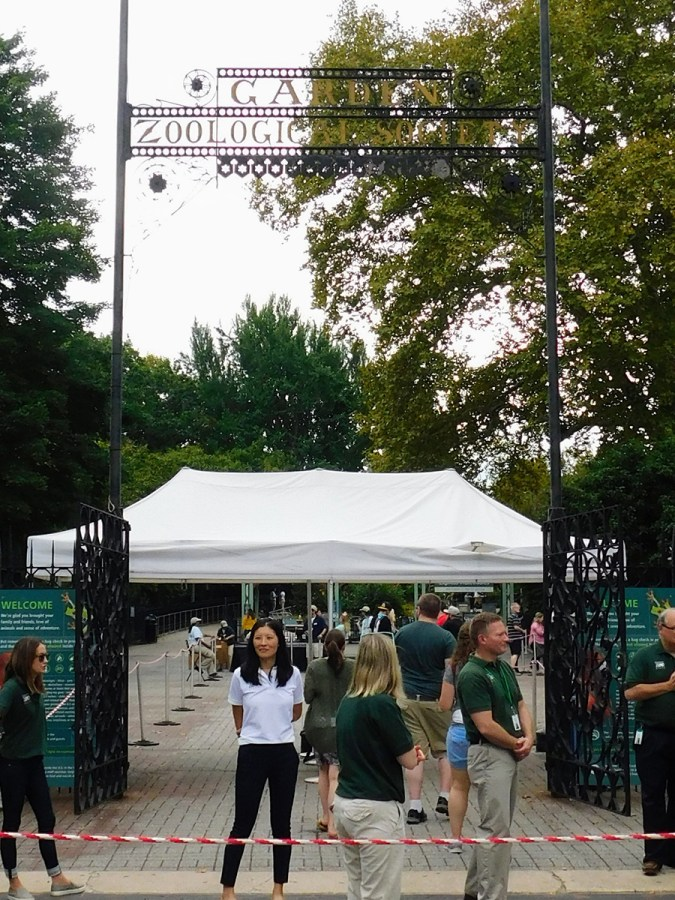 Philly-Zoo-OktoBEARfest-2018-164053