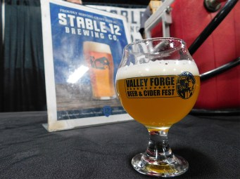 Valley-Forge-Craft-Beer-Fest-2018_120118-124544