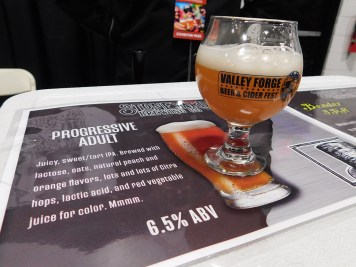 Valley-Forge-Craft-Beer-Fest-2018_120118-131339