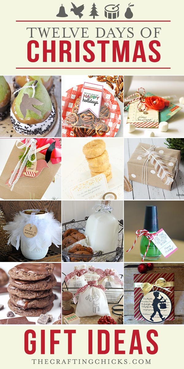 12 Days Of Christmas Gift Ideas Part 3 The Crafting Chicks