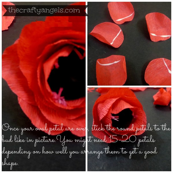 Crepe paper flower tutorial (5)