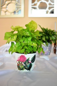 Angela Jose Crafttreat GDT post - decoupaged planters, DIY planter, handmade planter, decoupage planter, diy planter for indoor plants