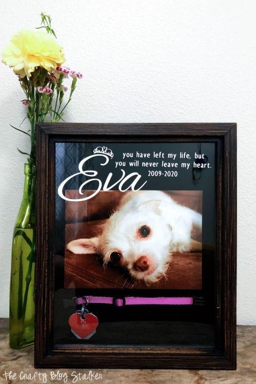Dog Memorial Shadow Box : memorial, shadow, Meaningful, Memorial, Shadow, Crafty, Stalker