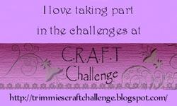 CRAFT Challenge Blog