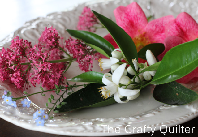 pink and white plate