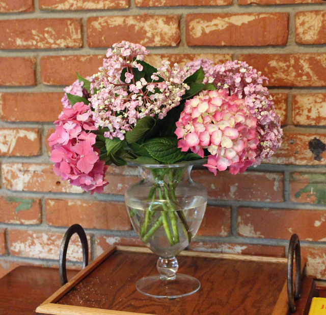 hydrangea inside vase