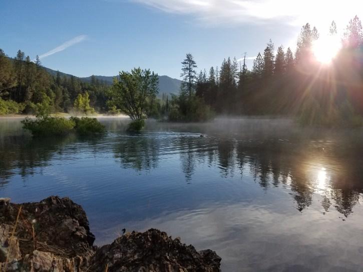 Early morning - Lake Shasta 2017
