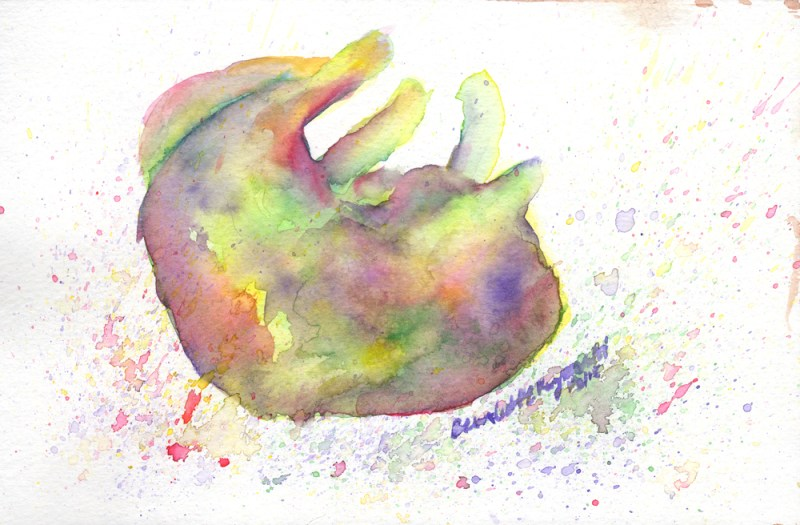 watercolor of sleeping cat