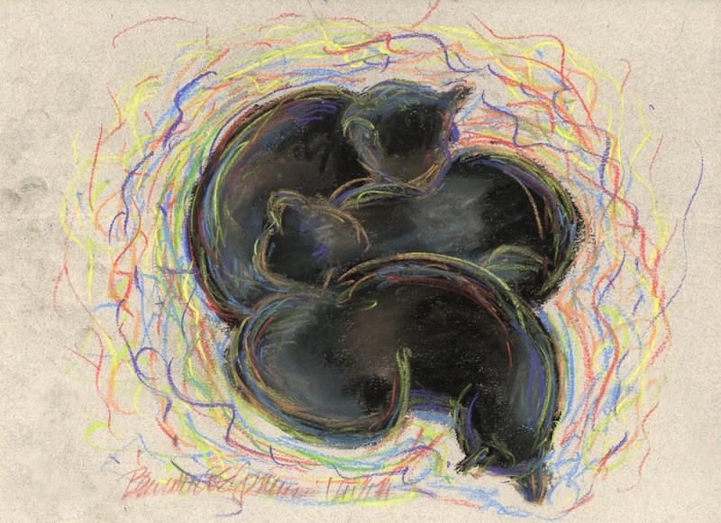 pastel sketch of three black cats in colors