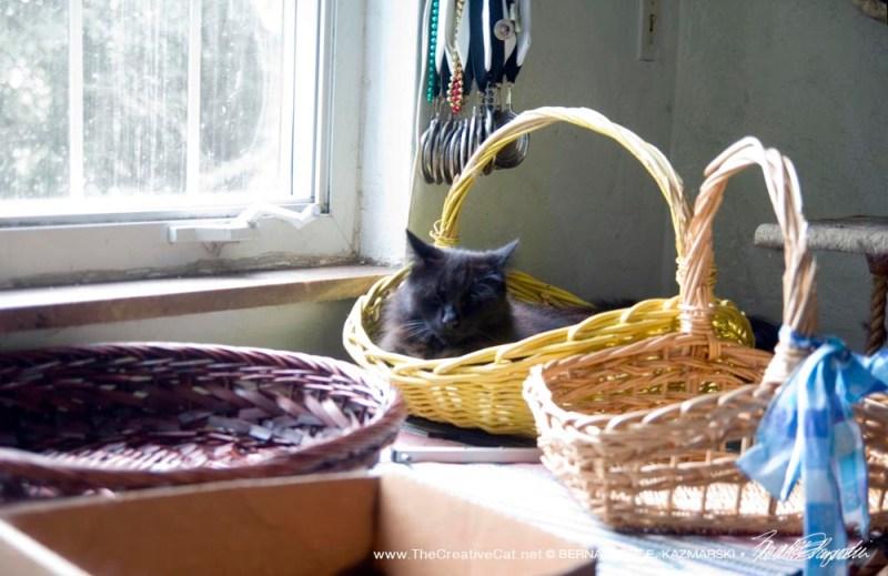 Hamlet chooses his basket.