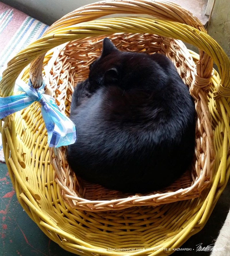 A basket in a basket!