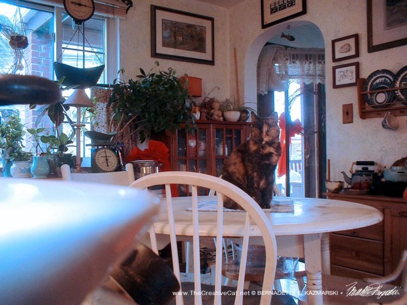 The full kitchen.