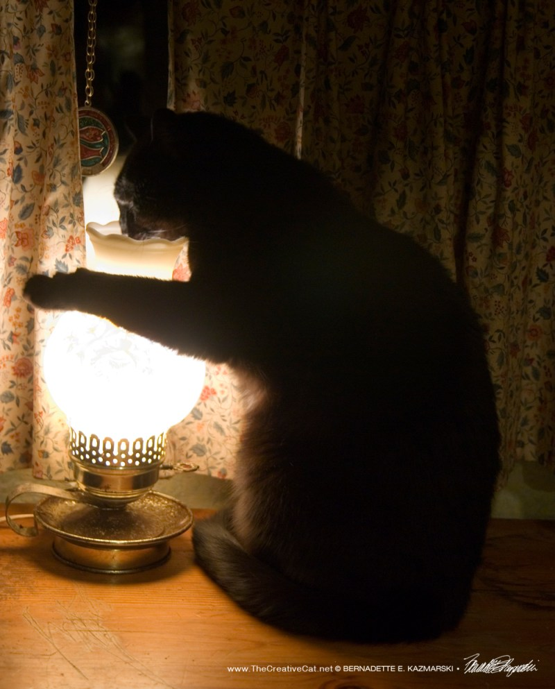 Bella getting in touch with the lamp.
