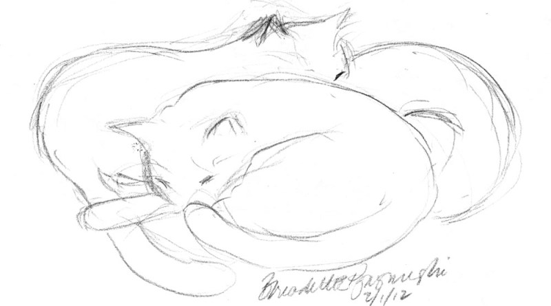 pencil sketch of three cats sleeping