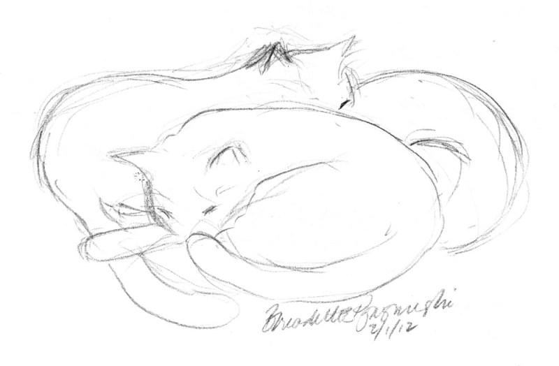 pencil sketch of three cats sleeping
