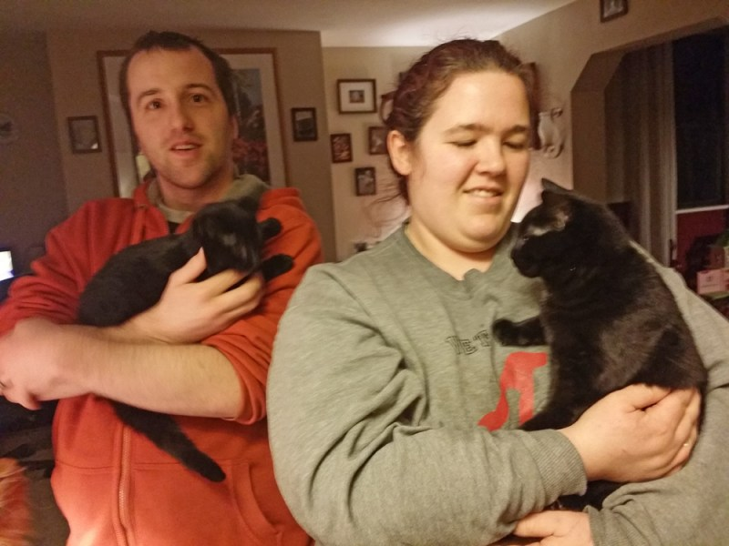 two black cats with people