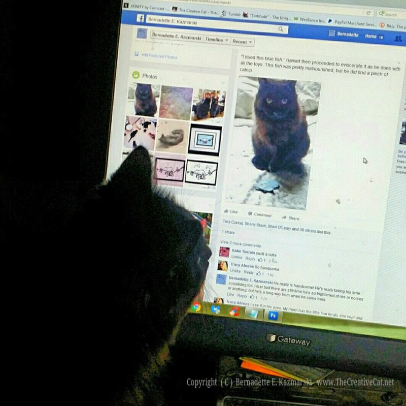Hamlet sees himslef on Facebook.