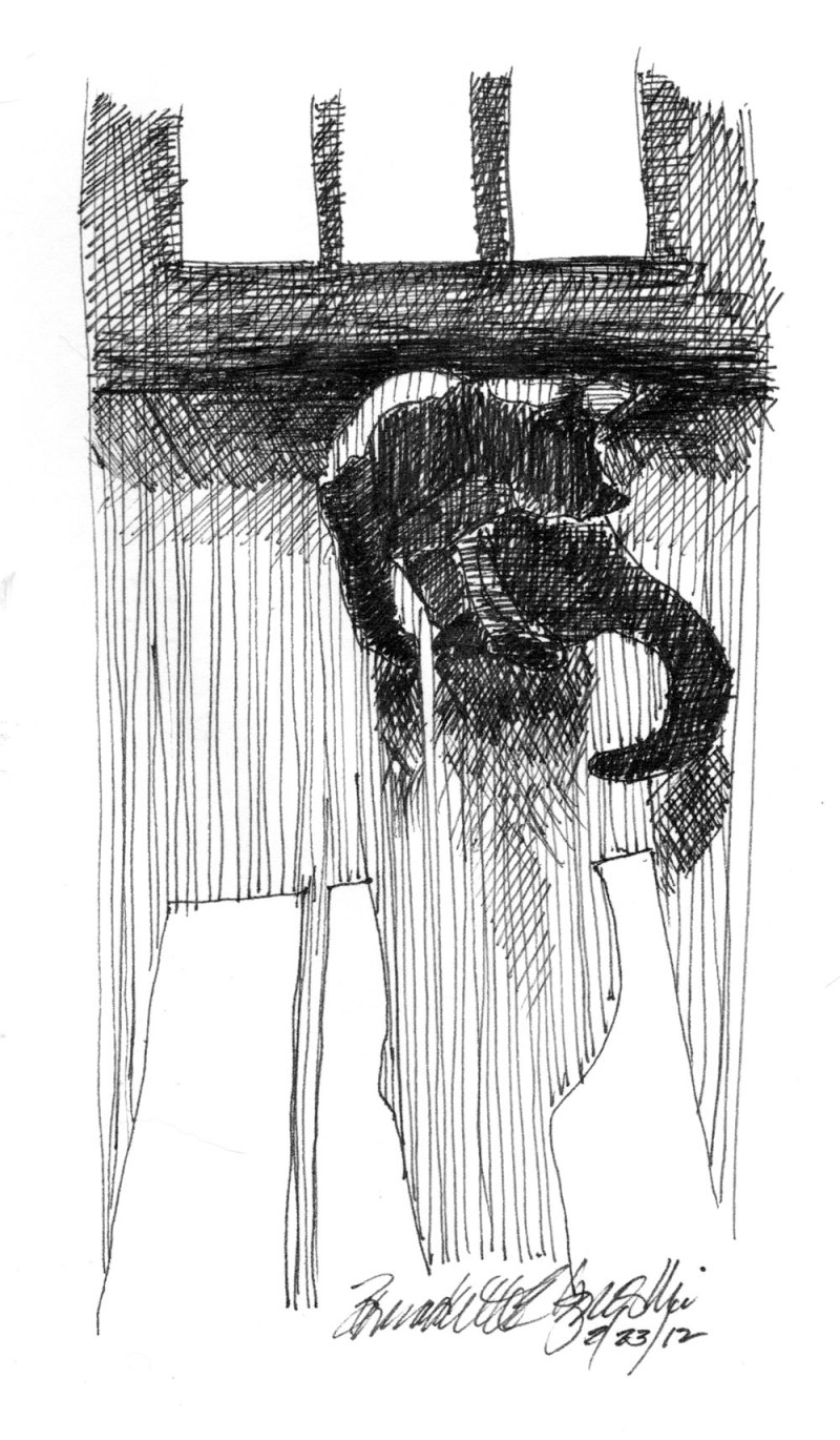 ink sketch of cat bathing
