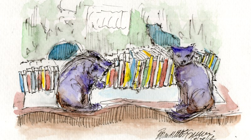ink and watercolor sketch of two cats with books