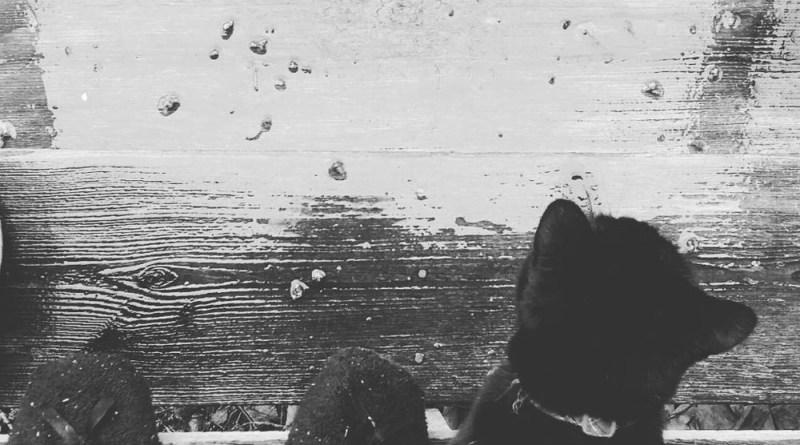 Mimi in the Rain