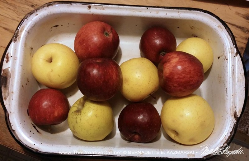 Mixed apples for the apple crisp look pretty in the pan.