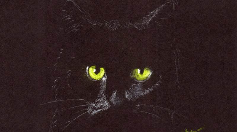 sketch of black cat on black paper