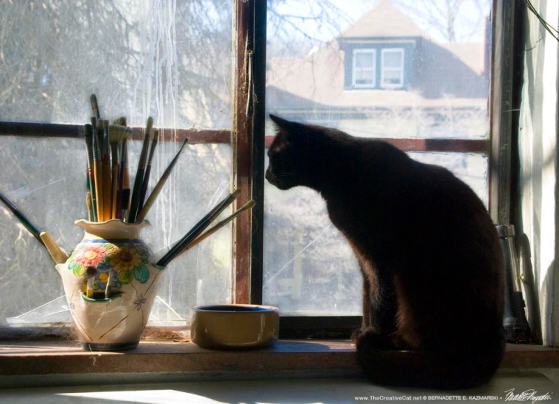 Sunny Studio Window