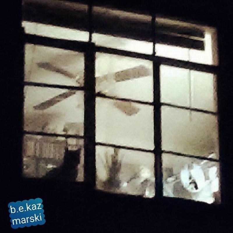 Mimi waiting in the studio window.