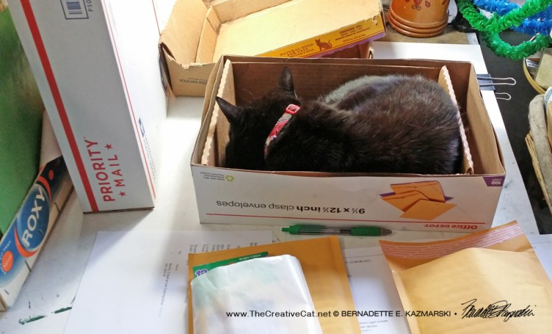 Mimi assists with packing orders.
