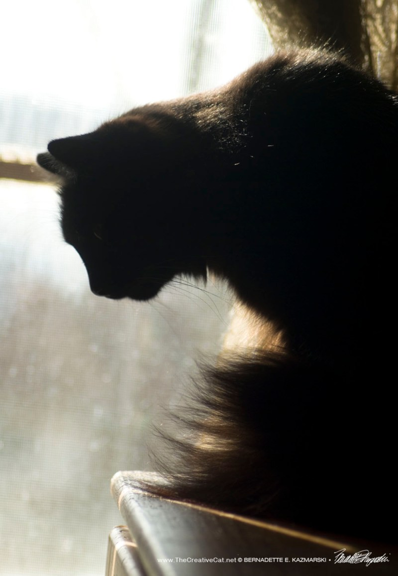 Hamlet at the window, 2