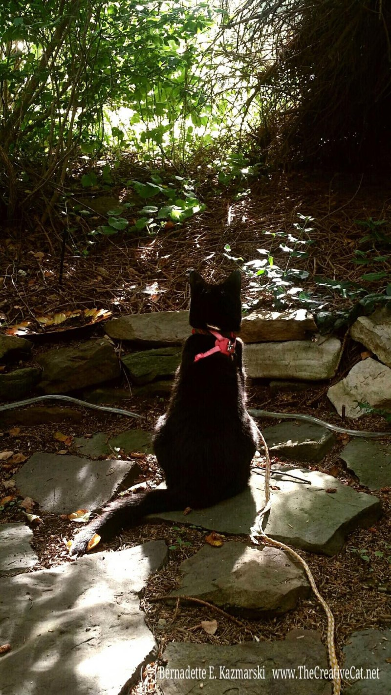 Mimi and I enjoy the courtyard.