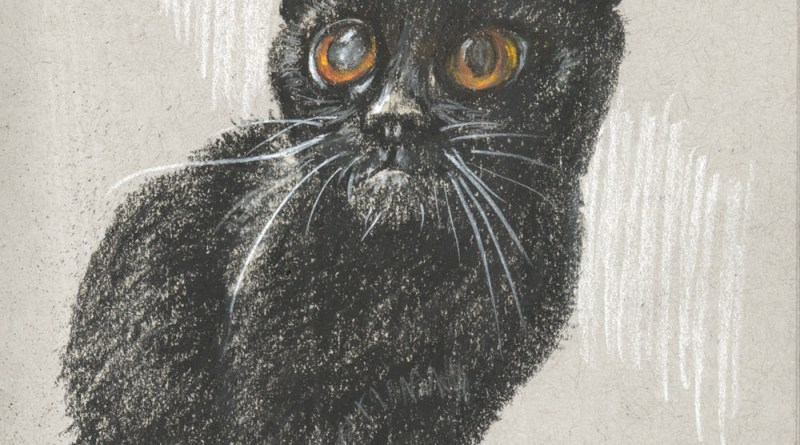 charcoal sketch of cat