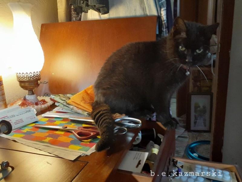 black cat sewing machine