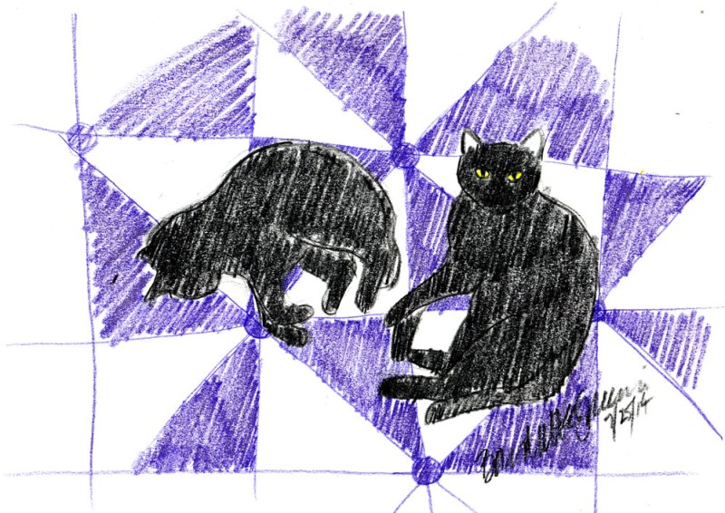 two black cats on quilt