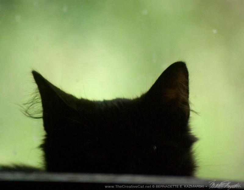 Alvina, hiding.