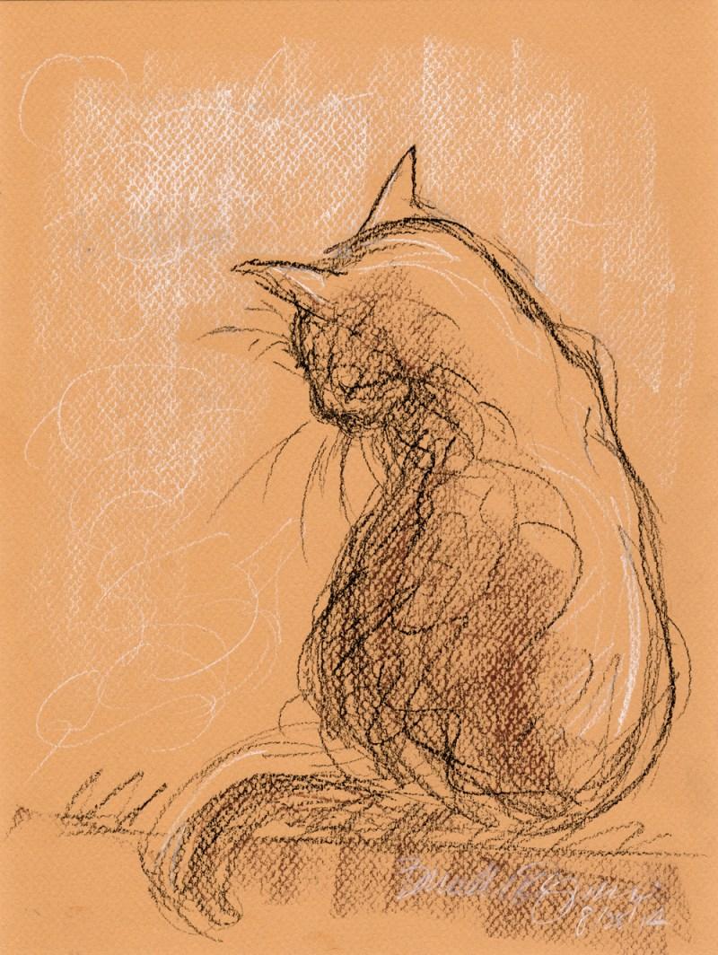 conte crayon sketch of cat bathing