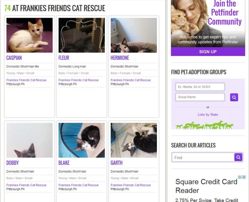 Frankie's Friends PetFinder page.