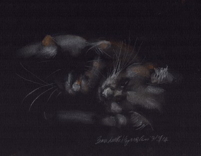 pastel sketch of two cats sleeping
