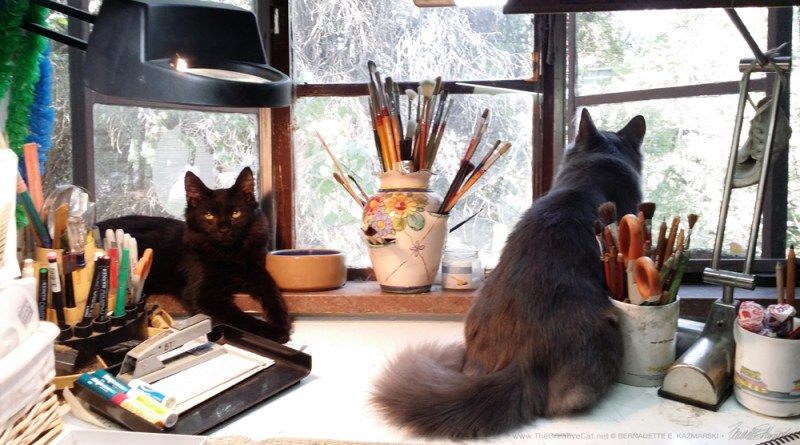 Simon watches me while Teddy Bear watches birds in the spruce.